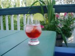 Sloe Lime Daiquiri