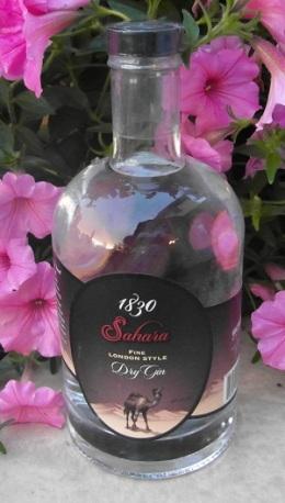 SAM_1211 Sahara Gin