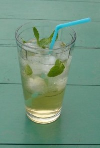 Spiced Northern Julep