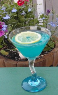 SAM_0771 Bluebird of Happiness
