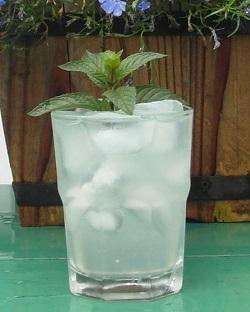 SAM_0888 Vodka Mojito
