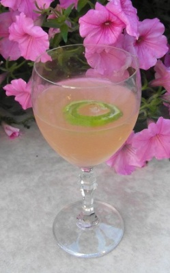 Lime Crusta with Sahara Dry Gin