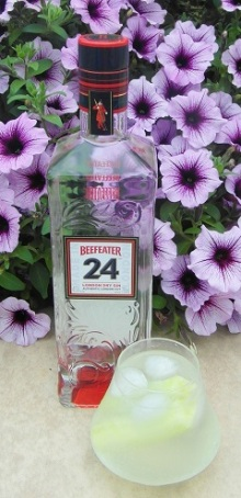 Beefeater 24 and T SAM_1250
