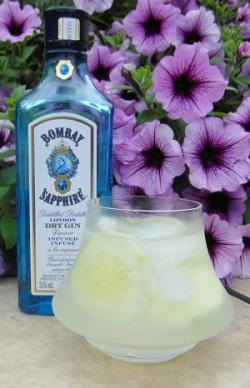Bombay Sapphire & Tonic SAM_1253