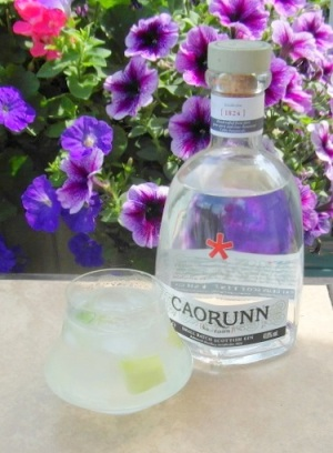 Caorunn and Tonic