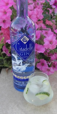 Citadelle and Tonic SAM_1243