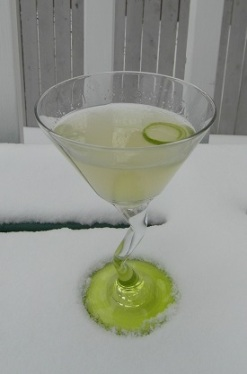 Lime Martini SAM_1465