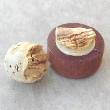 Peruano Cork SAM_1557