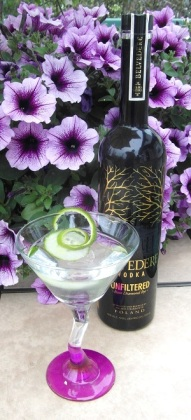 Dry Vodka Martini SAM_1606