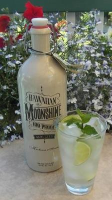Moonshine Mojito SAM_1676