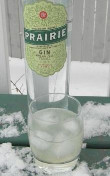 Gin and Lime SAM_2357
