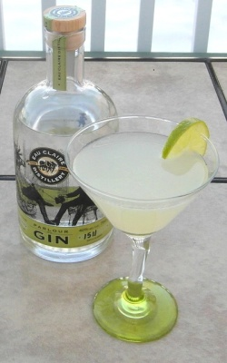 Lemon-lime Gimlet SAM_2439
