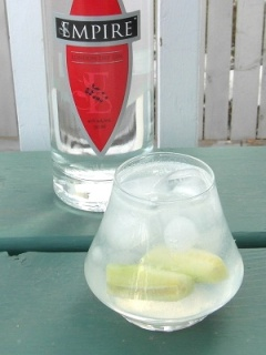 Gin and Tonic #2 SAM_2468