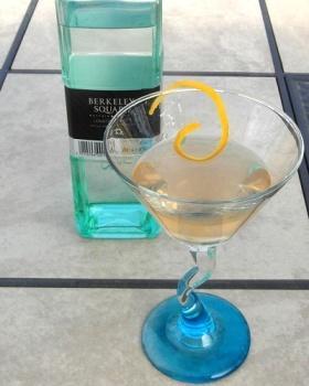 Gin Cocktail SAM_2473
