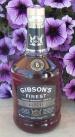 Gibson Bold SAM_2610