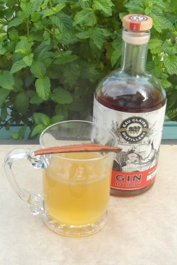 gin-rummy-toddy-sam_2756