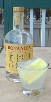 botanica-and-tonic-sam_2874